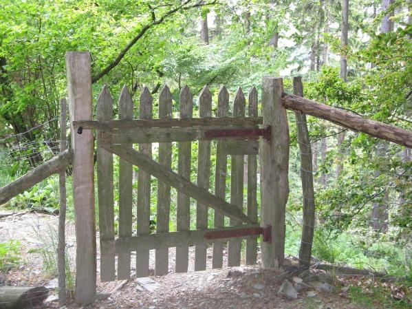 fence-955060_1280
