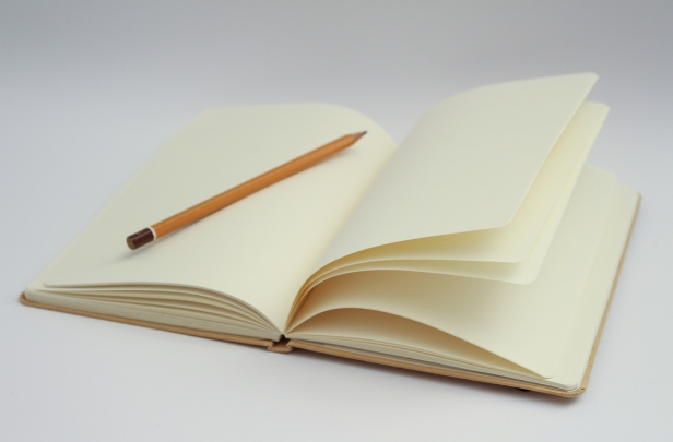 notebook-writing-book-pencil-wing-wood-940438-pxhere.com